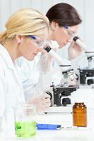 Причины белка в моче (протеинурии)