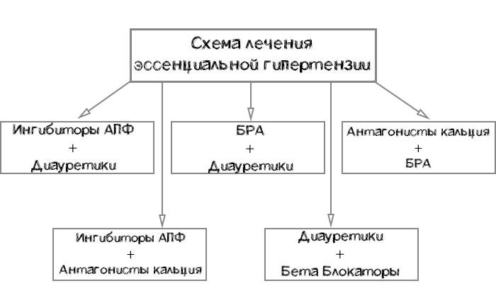схема лечения эссенциальной гипертензии