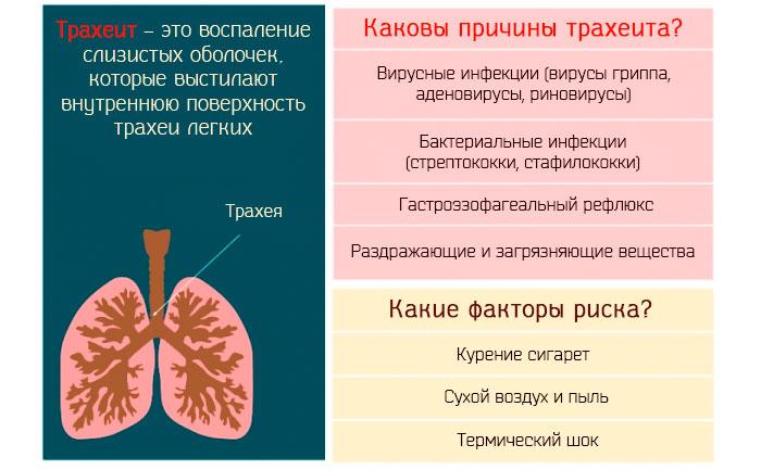 причины трахеита